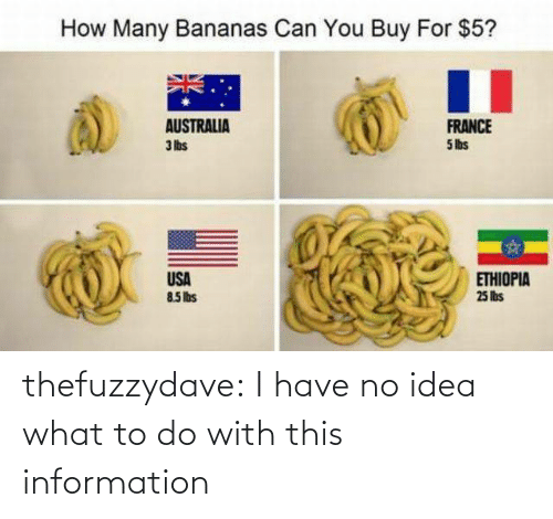 What To Do: How Many Bananas Can You Buy For $5?  AUSTRALIA  3 lbs  FRANCE  5 lbs  USA  85Ibs  ETHIOPIA  25 lis thefuzzydave: I have no idea what to do with this information