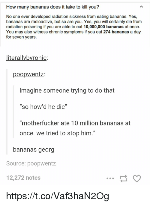 """Georg: How many bananas does it take to kill you?  No one ever developed radiation sickness from eating bananas. Yes,  bananas are radioactive, but so are you. Yes, you will certainly die from  radiation poisoning if you are able to eat 10,000,000 bananas at once.  You may also witness chronic symptoms if you eat 274 bananas a day  for seven years.  literallybyronic:  poopwentz:  imagine someone trying to do that  """"so how'd he die""""  """"motherfucker ate 10 million bananas at  once. we tried to stop him.""""  bananas georg  Source: poopwentz  12,272 notes https://t.co/Vaf3haN2Og"""