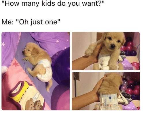 """how-many-kids: """"How many kids do you want?""""  Me: """"Oh just one'""""  1"""
