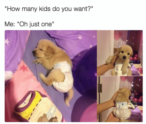 """how-many-kids: """"How many kids do you want?""""  Me: """"Oh just one"""""""