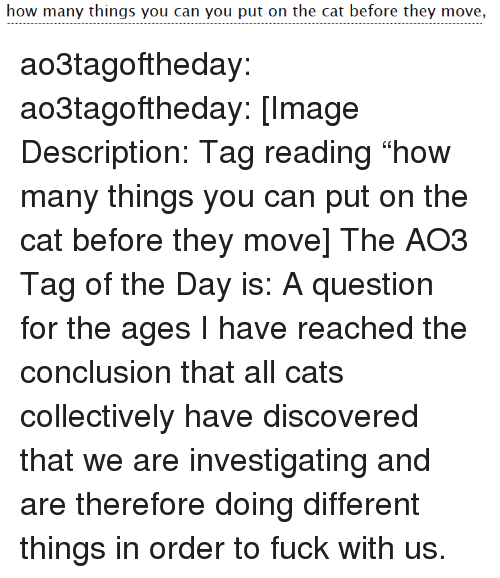 "Cats, Target, and Tumblr: how many things you can you put on the cat before they move, ao3tagoftheday:  ao3tagoftheday:  [Image Description: Tag reading ""how many things you can put on the cat before they move]  The AO3 Tag of the Day is: A question for the ages   I have reached the conclusion that all cats collectively have discovered that we are investigating and are therefore doing different things in order to fuck with us."
