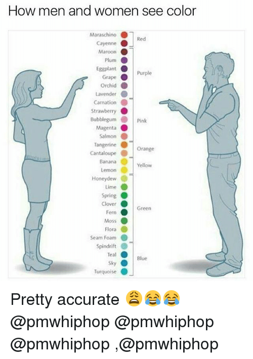 eggplant: How men and women see color  Maraschino  Red  Cayenne  Maroon  Plum  O  Eggplant  O  Purple  Grape  orchid  Lavender  Carnation  Strawberry  Bubblegum Pink  Magenta  Salmon  Tangerine  Orange  Cantaloupe  Banana  Yellow  Lemon  Honeydew  Lime  Spring  Clover  Green  Fern  Moss  Flora  Seam Foam  Spindrift  Teal  Blue  Sky  O  Turquoise Pretty accurate 😩😂😂 @pmwhiphop @pmwhiphop @pmwhiphop ,@pmwhiphop