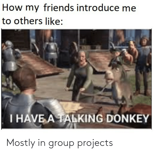 group: How my friends introduce me  to others like:  I HAVE A TALKING DONKEY Mostly in group projects