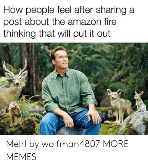 Amazon, Dank, and Fire: How people feel after sharing a  post about the amazon fire  thinking that will put it out MeIrl by wolfman4807 MORE MEMES