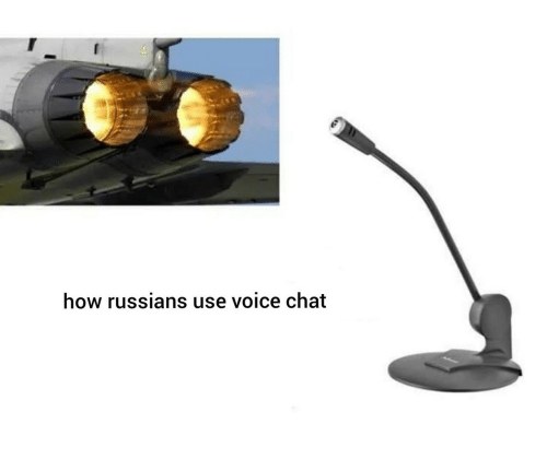 Chat, Voice, and How: how russians use voice chat