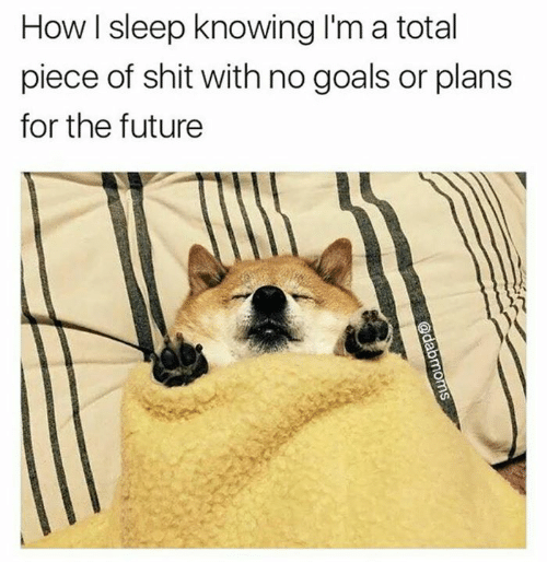 Pieces Of Shits: How sleep knowing I'm a total  piece of shit with no goals or plans  for the future