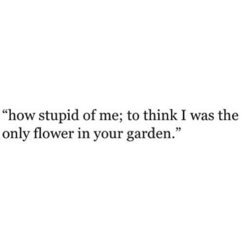 "How Stupid: ""how stupid of me; to think I was the  only flower in your garden."""
