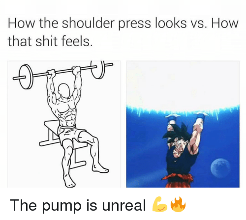 Gym, Shit, and How: How the shoulder press looks vs. How  that shit feels. The pump is unreal 💪🔥