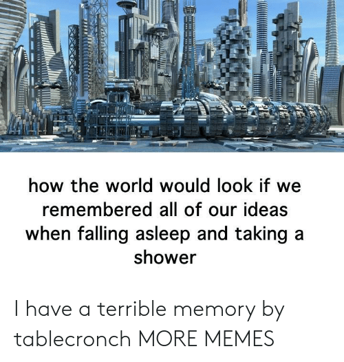 taking a shower: how the world would look if we  remembered all of our ideas  when falling asleep and taking a  shower I have a terrible memory by tablecronch MORE MEMES