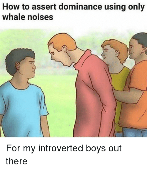 introverted: How to assert dominance using only  whale noises For my introverted boys out there