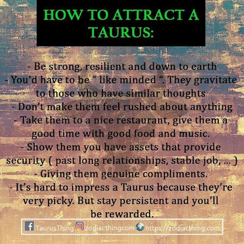 "Be Like, Food, and Music: HOW TO ATTRÁCT A  TAURUS:  - Be strong, resilient and down to earth  You'd have to be ""like minded They gravitate  to those who have similar thoughts  Don't make them feel rushed about anything  Take them to a nice restaurant, give them a  good time with good food and music.  Show them you have assets that provide  security ( past long relationships, stable job,.)  am, -Giving them genuine compliments.  It's hard to impress a Taurus because they're  very picky. But stay persistent and you'll  be rewarded.  f Taurus Thing@bog@cthingcom⑦https:/ /Zodiacthing.com"