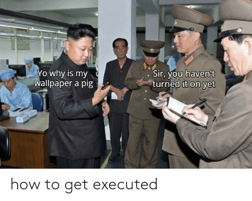 How To, How, and Get: how to get executed