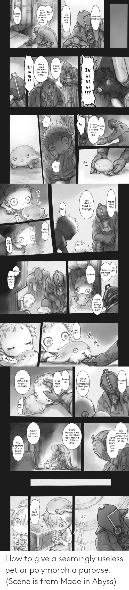 seemingly: How to give a seemingly useless pet or polymorph a purpose. (Scene is from Made in Abyss)