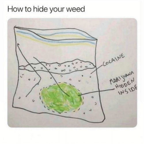 Weed, How To, and How: How to hide your weed  00臼  HIDD