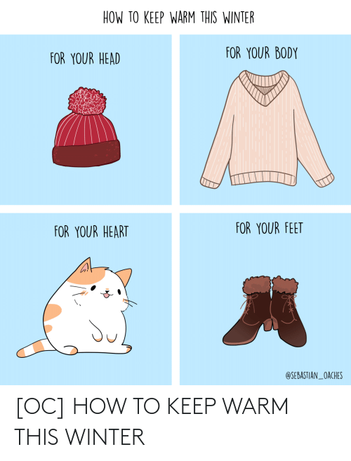 Head, Winter, and Heart: HOW TO KEEP WARM THIS WINTER  FOR YOUR BODY  FOR YOUR HEAD  FOR YOUR FEET  FOR YOUR HEART  @SEBASTIAN_OACHES [OC] HOW TO KEEP WARM THIS WINTER
