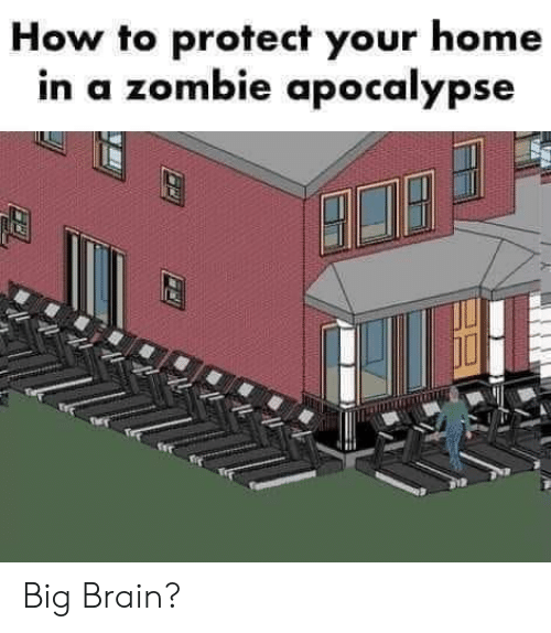 Brain, Home, and How To: How to protect your home  in a zombie apocalypse Big Brain?