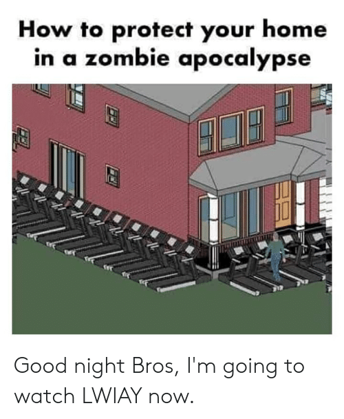 Good, Home, and How To: How to protect your home  in a zombie apocalypse Good night Bros, I'm going to watch LWIAY now.