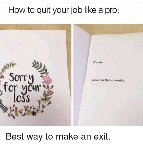 Dank, Sorry, and Best: How to quit your job like a pro:  98  It's me  Sorry  I leave in three weeks.  for you  loss Best way to make an exit.