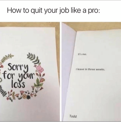 Sorry, How To, and Pro: How to quit your job like a pro:  It's me.  Sorry  I leave in three weeks.  OSS  Todd