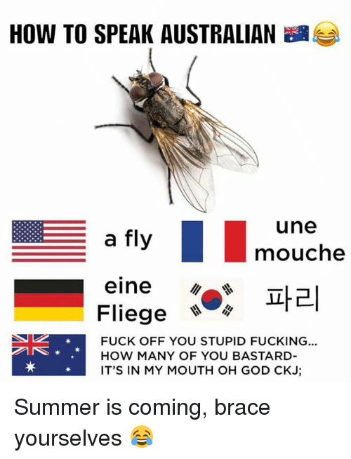You Bastards: HOW TO SPEAK AUSTRALIAN  une  a fly  mouche  eine  Fliege  FUCK OFF YOU STUPID FUCKING...  HOW MANY OF YOU BASTARD  IT'S IN MY MOUTH OH GOD CIKJ Summer is coming, brace yourselves 😂
