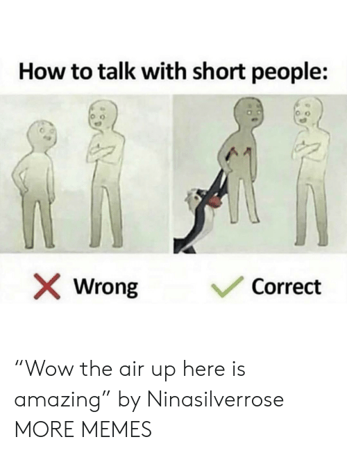 "Air Up: How to talk with short people:  Correct  Wrong ""Wow the air up here is amazing"" by Ninasilverrose MORE MEMES"