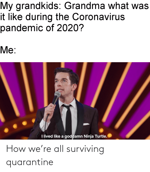 all: How we're all surviving quarantine