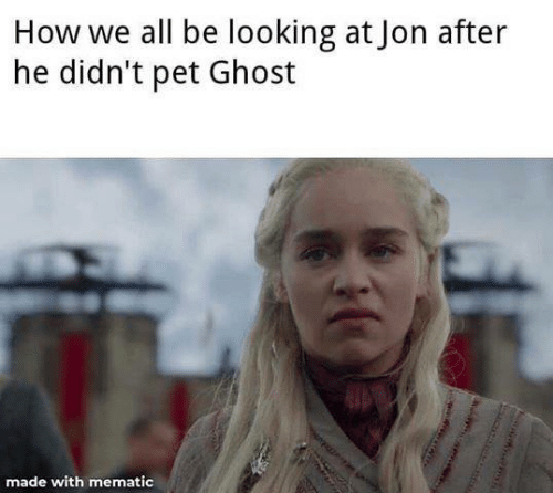 Game of Thrones, Ghost, and How: How we all be looking at Jon after  he didn't pet Ghost  made with mematic