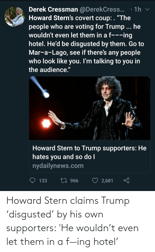 Hotel: Howard Stern claims Trump 'disgusted' by his own supporters: 'He wouldn't even let them in a f—ing hotel'
