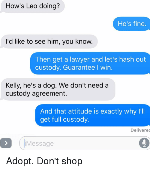 Dogs, Lawyer, and Relationships: How's Leo doing?  He's fine  I'd like to see him, you know.  Then get a lawyer and let's hash out  custody. Guarantee l win.  Kelly, he's a dog. We don't need a  custody agreement.  And that attitude is exactly why I'll  get full custody.  Delivered  Message Adopt. Don't shop