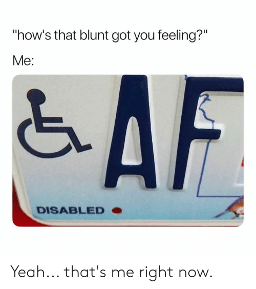"""Memes, Yeah, and 🤖: """"how's that blunt got you feeling?""""  Me:  DISABLED Yeah...  that's me right now."""