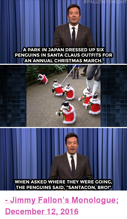 """Nbc Com: HT  A PARK IN JAPAN DRESSED UP SIx  PENGUINS IN SANTA CLAUS OUTFITS FOR  AN ANNUAL CHRISTMAS MARCH  WHEN ASKED WHERE THEY WERE GOING  THE PENGUINS SAID, """"SANTACON, BRO!"""" <p><b><a href=""""http://www.nbc.com/the-tonight-show/video/cia-concludes-russia-interfered-with-us-election-santa-penguins-march-monologue/3439742"""" target=""""_blank"""">- Jimmy Fallon's Monologue; December 12, 2016</a></b></p>"""