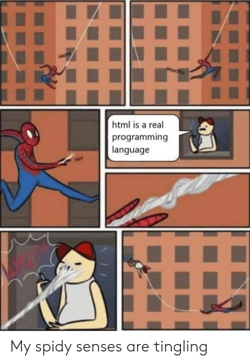 Programming, Html, and Language: html is a real  programming  language My spidy senses are tingling