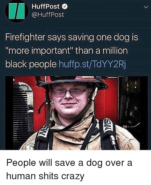 """Huffpost: HuffPost  @HuffPost  Firefighter says saving one dog is  more important"""" than a million  black people huffp.st/TdYY2Rj People will save a dog over a human shits crazy"""