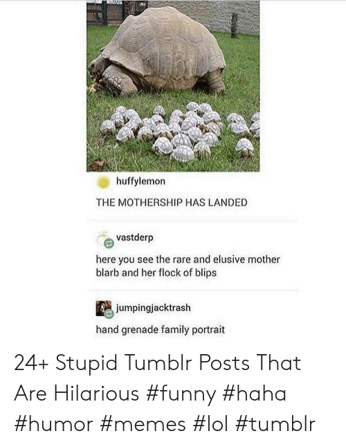 Memes Lol: huffylemon  THE MOTHERSHIP HAS LANDED  vastderp  here you see the rare and elusive mother  blarb and her flock of blips  jumpingjacktrash  hand grenade family portrait 24+ Stupid Tumblr Posts That Are Hilarious #funny #haha #humor #memes #lol #tumblr