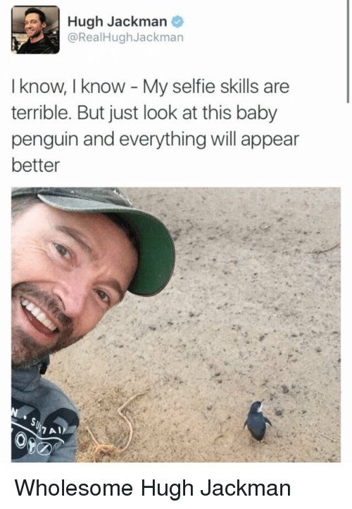 Hugh Jackman: Hugh Jackman  @RealHughJackman  I know, I know My selfie skills are  terrible. But just look at this baby  penguin and everything will appear  better Wholesome Hugh Jackman