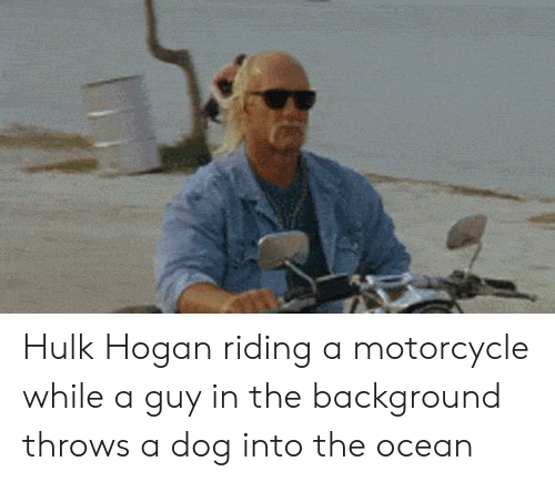 Hulk Hogan: Hulk Hogan riding a motorcycle while a guy in the background throws a dog into the ocean