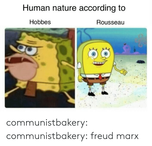Tumblr, Blog, and Http: Human nature according to  Hobbes  Rousseau communistbakery:  communistbakery:  freud  marx