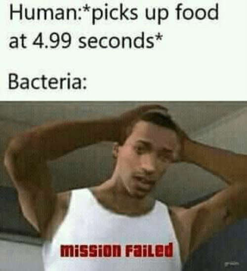 Food, Human, and Bacteria: Human:*picks up food  at 4.99 seconds*  Bacteria:  mission FaiLed