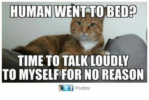 humanism: HUMAN WENT TO BED  TIME TO TALK LOUDLY  TO MYSELF FOR NO REASON  t f  Postize