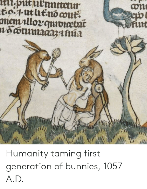 Bunnies: Humanity taming first generation of bunnies, 1057 A.D.