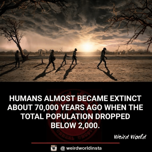 Memes, Weird, and World: HUMANS ALMOST BECAME EXTINCT  ABOUT 70,000 YEARS AGO WHEN THE  TOTAL POPULATION DROPPED  BELOW 2,000.  Weird World  @ weirdworldinsta