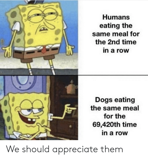 Dogs, Appreciate, and Time: Humans  eating the  same meal for  the 2nd time  in a row  Dogs eating  the same meal  for the  69,420th time  in a row We should appreciate them