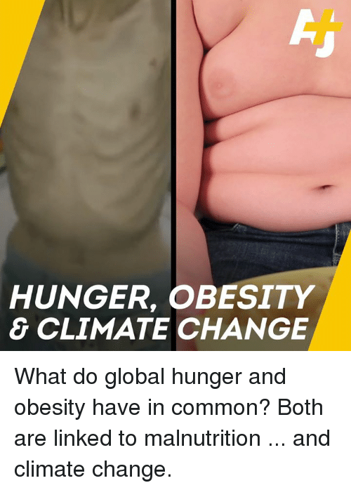 hunger and obesity are both huge problems Obesity in developing countries: people are overweight but still not well nourished chris burslem, ifpri (november 11, 2004) for as long as the world has known it, malnutrition has been associated with hunger, conjuring up images of gaunt and prematurely aged children and adults.