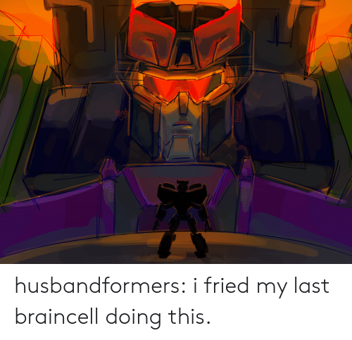 Fried: husbandformers:  i fried my last braincell doing this.