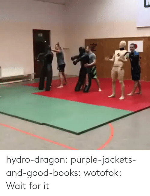 dragon: hydro-dragon: purple-jackets-and-good-books:  wotofok:  Wait for it