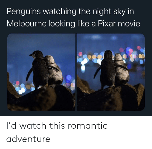 romantic: I'd watch this romantic adventure
