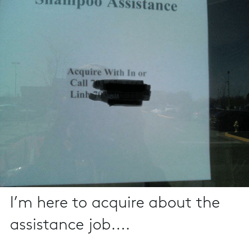 acquire: I'm here to acquire about the assistance job....