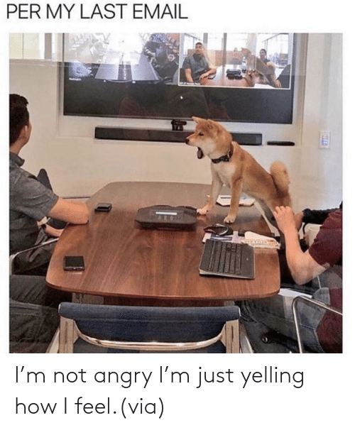yelling: I'm not angry I'm just yelling how I feel.(via)