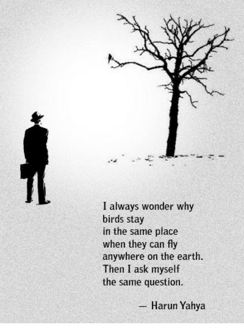 Birds, Earth, and Wonder: I always wonder why  birds stay  in the same place  when they can fly  anywhere on the earth  Then I ask myself  the same question  Harun Yahya