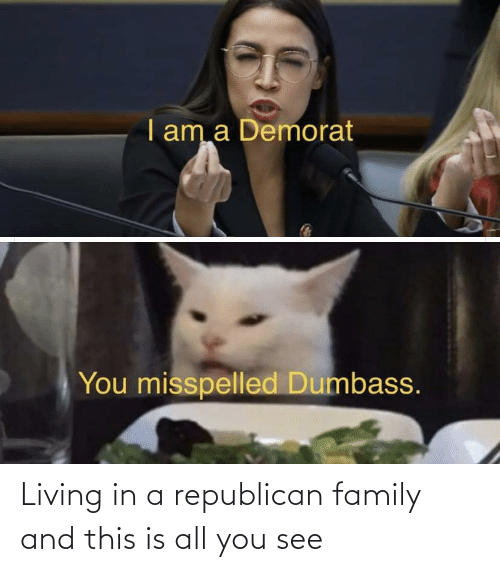 a republican: I am a Demorat  You misspelled Dumbass. Living in a republican family and this is all you see